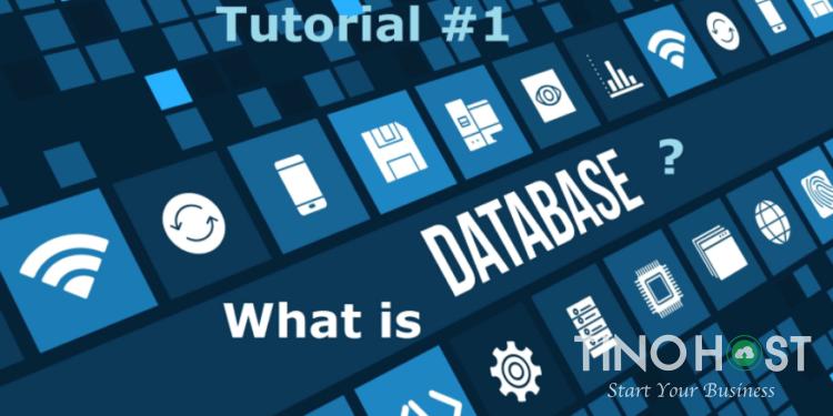 Cơ sở dữ liệu là gì? Cơ sở dữ liệu quan hệ là gì?